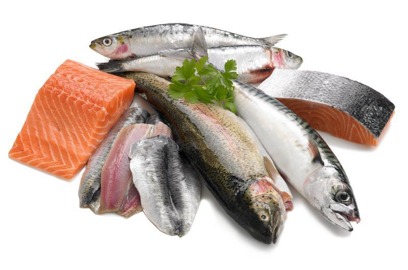 Fresh Fish Fast
